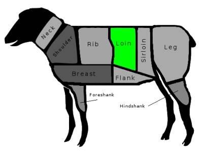 lamb loin
